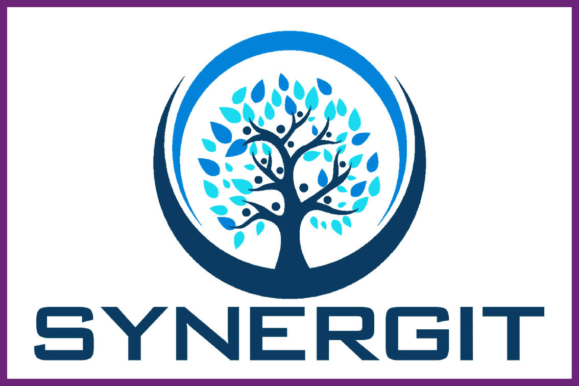 security-forum-synergit